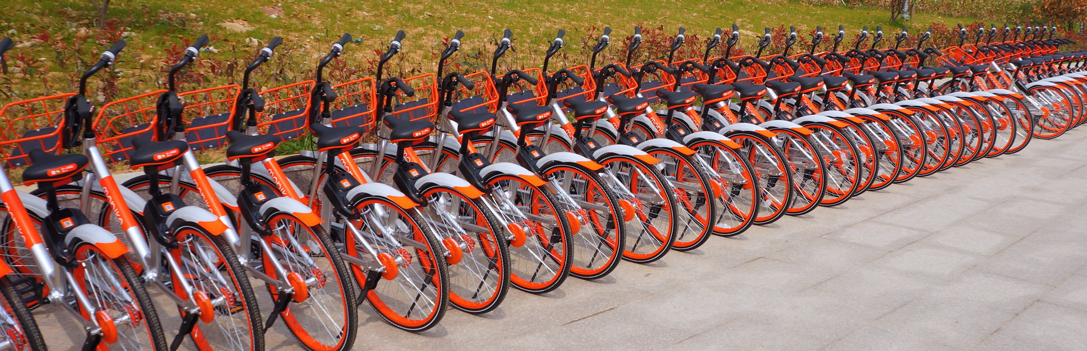 Mobikes in Xuzhuang